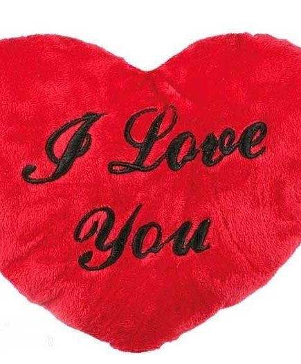 xekios Coeur de Peluche XL | I Love You 60 cm