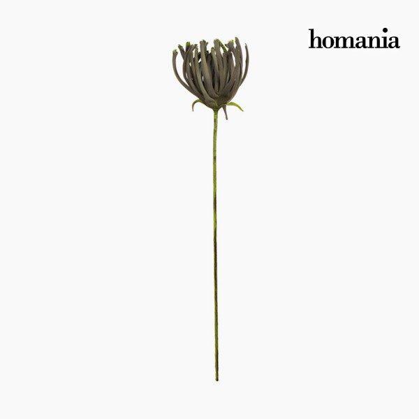 xekios Figurine Décorative Fleur Mousse Gris (85 cm) by Homania