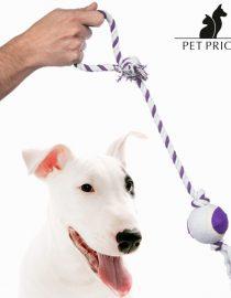 xekios Mangeoire pour Chien Doublement Réglable Pet Prior