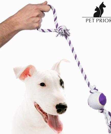 xekios Corde avec Balle pour Chien Pet Prior