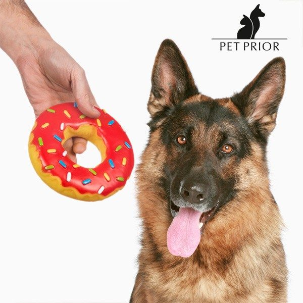 xekios Jouet pour Chien Donut Pet Prior