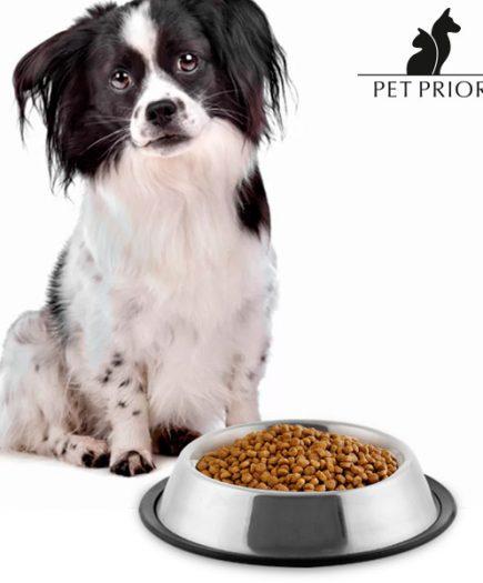 xekios Mangeoire pour Chiens Pet Prior