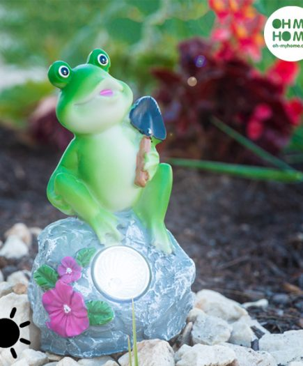 xekios Grenouille Solaire Décorative Oh My Home