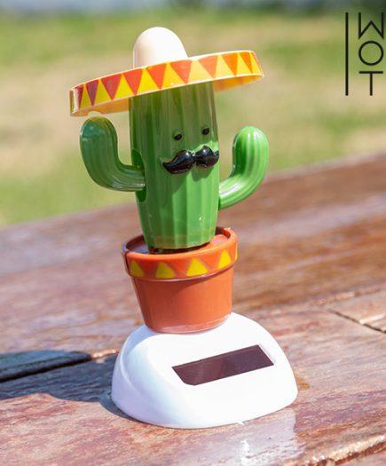 xekios Cactus Solaire avec Mouvement Wagon Trend